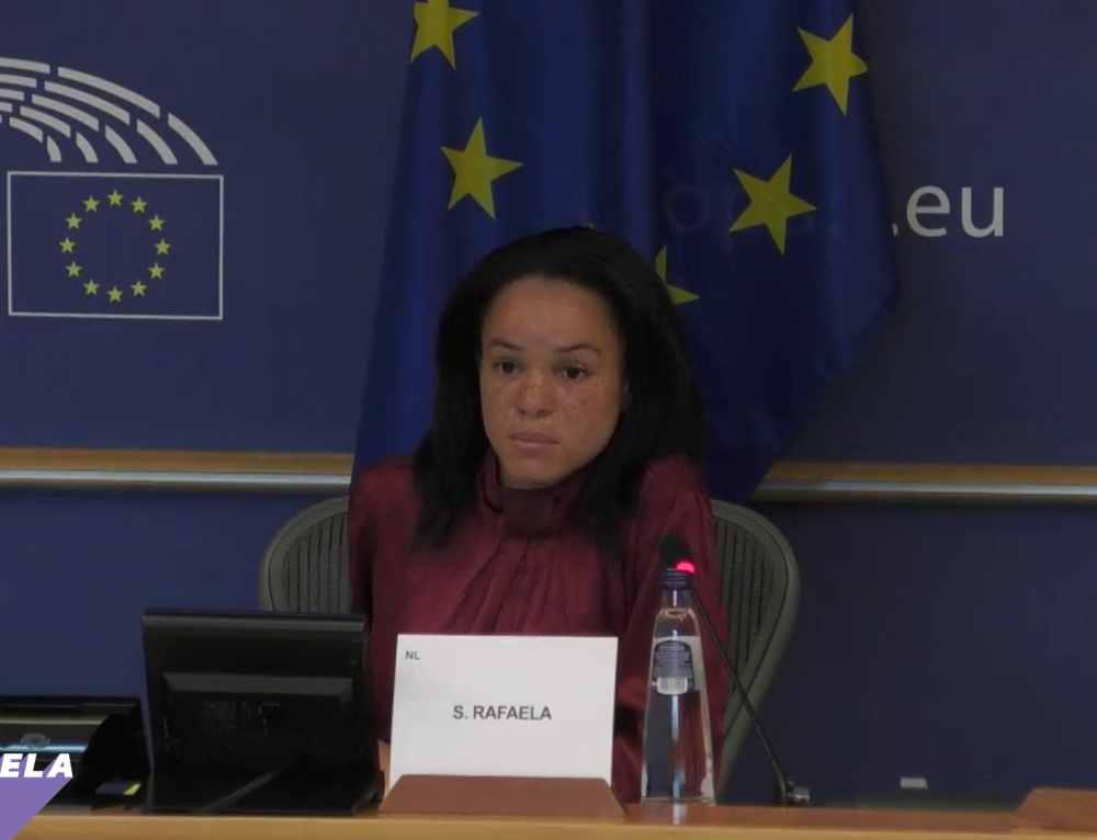 MEP Samira Rafaela supports NOW Campaign for more gender